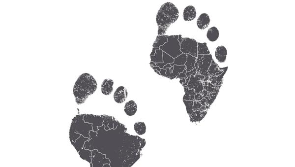 Fundsmith Emerging Equities logo