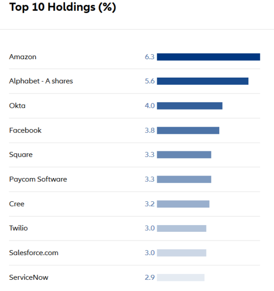 Allianz top ten holdings