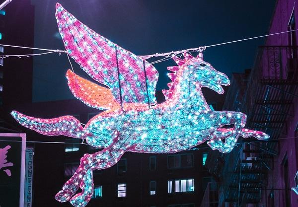 Unicorn, Photo by Wilmer Martinez on Unsplash